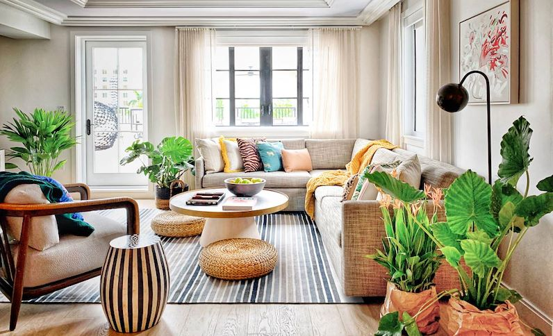 Suite. Living Room